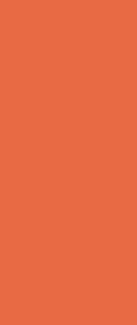 Panino illustrazione